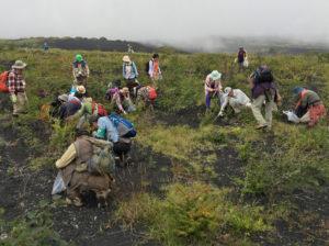 静岡県主催外来種撲滅大作戦